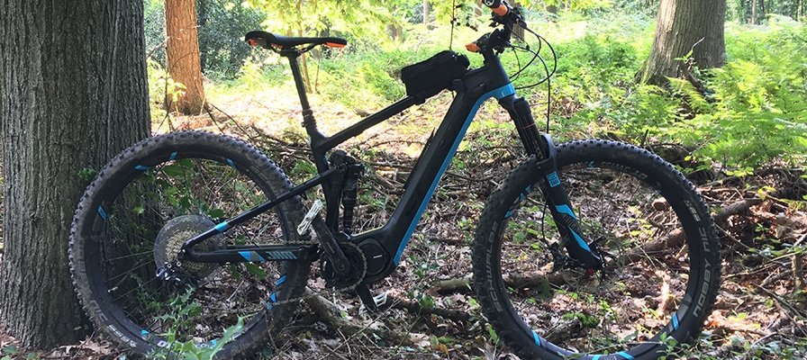 Das Focus Jam² Plus Pro im Wald