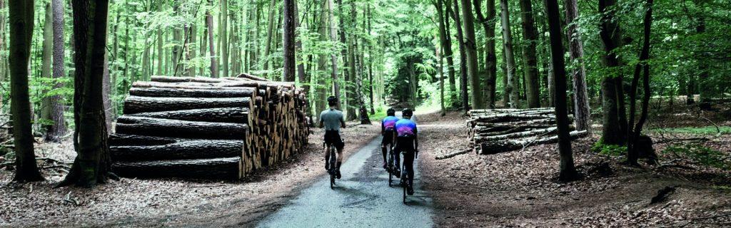 Männer auf Focus Paralane in Wald