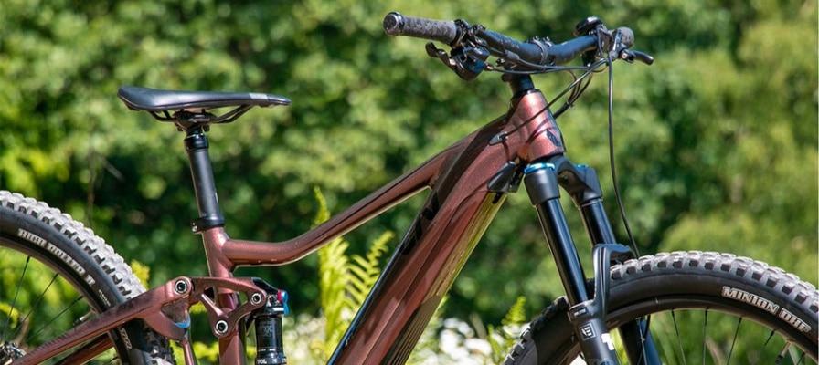 Liv Intrigue E+ 1 Pro e-Bike abgestellt im Grünen